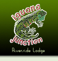 Iguana Junction Logo San Ignacio Belize