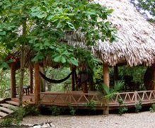 The Palapa at Iguana Junction San Ignacio Belize