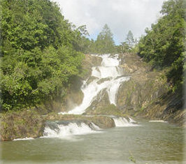Sapodilla Falls at Moon Racer Farm San Ignacio Belize