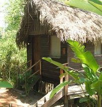 A cabin at Parrot Nest, San Ignacio, Belize
