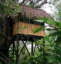 Tree house lodging at Parrots Nest, San Ignacio, Belize