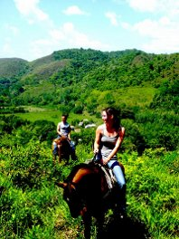 horseback riding through Mountain Pine Ridge with Mountain Equestrian Trails